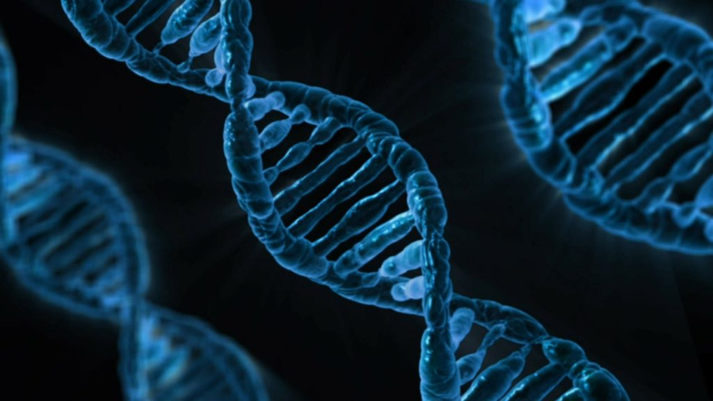 what causes acne - genes